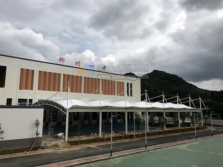 广西柳州一中游泳池及看台膜结构项目